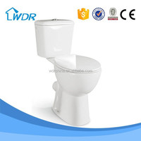 Sanitary accessory for the elderly wall outlet toilet