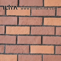 Antique Culture Wall Facing Bricks for House Design