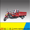 Competitive Price 150cc Adult tricycle With Strong Power