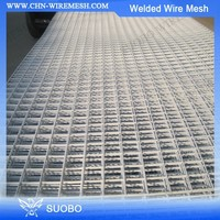 Hot Diped Galvanized Welded Wire Mesh Dog Cage 1X1 Welded Wire Mesh Welded Wire Mesh Fence Panels In 12 Gauge