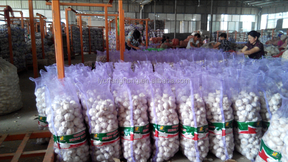 2014 New garlic Crop / Normal garlic