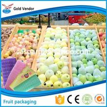 frutta fresca di stagione pacchetto di rete manica