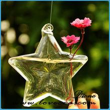 crystal star water plants glass terrarium hanging glass flower vase/ indoor plant decoration glass terrarium