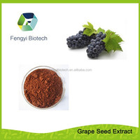 100% Natural Grape Seed Extract P.E. - powder OPC95%