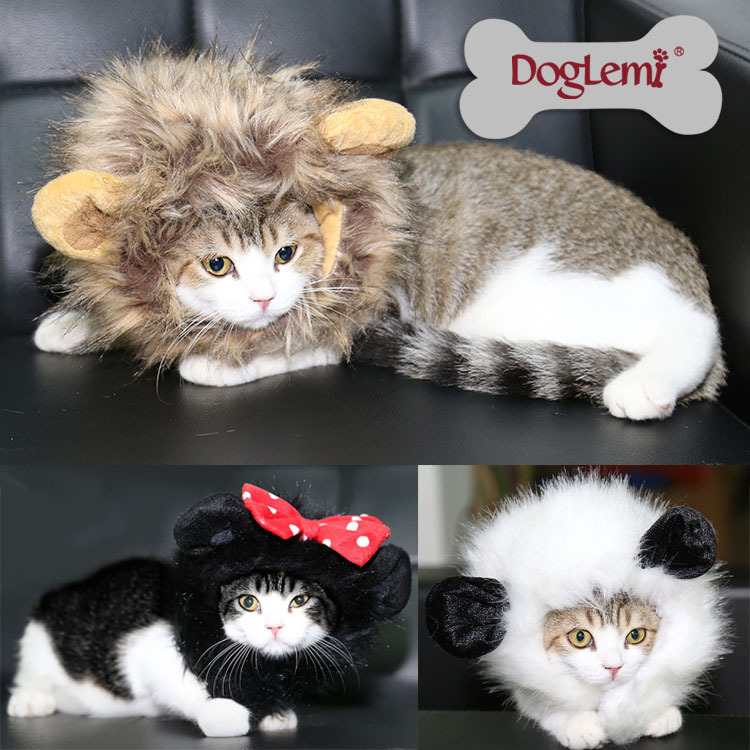 Panda Costume Cat Cat Lion Panda Mickey Mane Wig