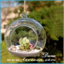 can Mix designs- hot sell indoor round shape hanging glass terrarium for home and wedding decoration within real planter