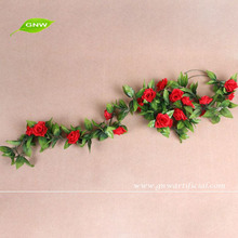 GNW FLV09 indian rose flower use for balloon flower root extract or other occasion