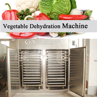 vegetable dehydration Dying Machine
