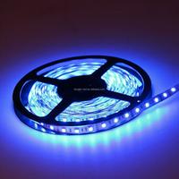 CE&RoHS 12V Waterproof Flex LED Strips Light SMD 3528 Blue Smart Lighting 120leds