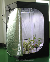 Modern new coming hydroponic greenhouse systems grow tent 100*100*200CM
