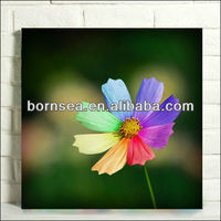 photographic digital picture printing stretched canvas decorative pictures wall painting