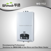 Reasonable price hot selling wall mounted gas water heater