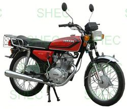 Motorcycle gasoline three wheel motorcycle for sale