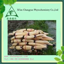 2015 hot sell Lotus root extract powder/Nodus Nelumbinis Rhizomatis Extract