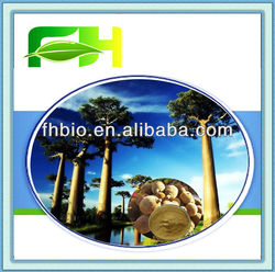 High Quality Natural Baobab Extract 10:1