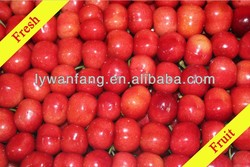 2013 artificial fruit cherries in big size on sale