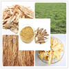 Factory direct supply with competitive price 100% Natural 1% Ligustilide Dahurian Angelica Root Extract