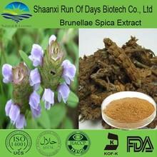 herbal medicine organic product of prunella vulgaris extract