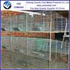 Best seller build rabbit cages factory/ Easily Assembled Commercial Rabbit Cage golden supplier (Factory)