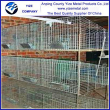 Best seller build rabbit cages factory/ Easily Assembled Commercial Rabbit Cage golden supplier (Factory)