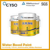 Water Based anti-fungus paint