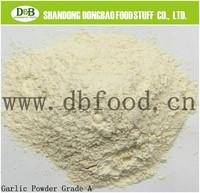 Garlic Powder(100-120)Animal Feed Grade for Janpan Market