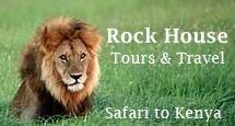 LION SAFARI - KENYA travel service