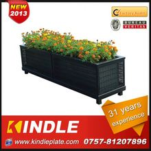 Kindle 2013 New polychrome unique flowering plants with 31 years experience