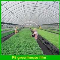good quality and cheap agriculture Plastic Film For Greenhouse 5 years