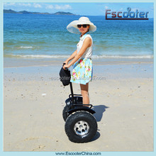 China factory supply smart two wheels electric self balancing scooter