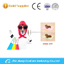 SAP China disposable Pet puppy dog training pad OEM service