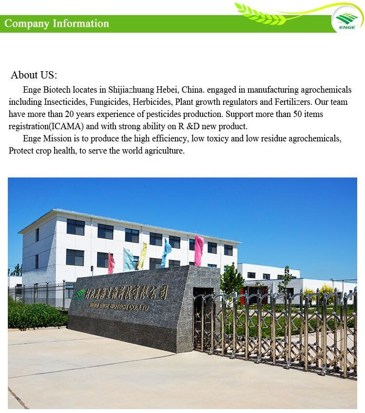 Enge 3 factory