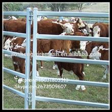 heavy duty beef rail economy cattle panel
