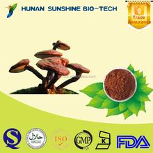 china natural product ganoderma lucidum extract promote sexual stamina