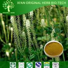 Top sell of Black Cohosh Extract/Triterpene 2%/CIMICIFUGA RACEMOSA Extract