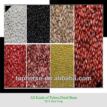 2015 Pulse Kidney Beans China Origin Top Quality