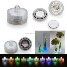 Splendid Colorful Small LED Submersible Single Floralyte Light