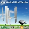 Chinese Best Quality 45W Mini Vertical Wind Power Generator