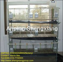 rabit rabbit cage system with tray(factory)3 or 4 layers