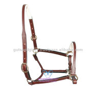 Halter 3/4 Inch Double Buckle Crown & Nose Cut Shape Throatlash Rolled with snap