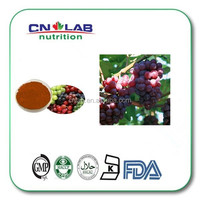 Natural and Pure Grape Seed Extract Powder/Oil with Bulk Supply