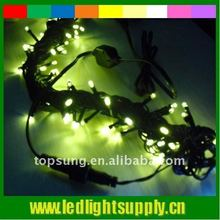 230v Top quality 50 bulbs LED stage chain lights outdoor lights wedding light curtain