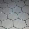 ISO9001 Supplier Hexagonal Chicken Wire Mesh Made By Zhuoda