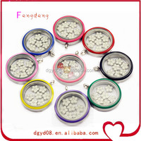 Fashion Jewelry Stainless steel floating charms glass locket /stainless steel jewelry