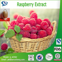 100% Natural & pure raspberry extract with superior quality, factory supply raspberry extract