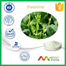 Best quality organic green tea extract /green tea price per kg