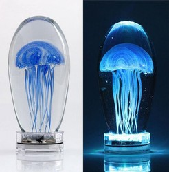 Clear glass colorul jellyfish with led base