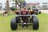350cc water cooled ATV Quad EEC for 2seater road legal bike