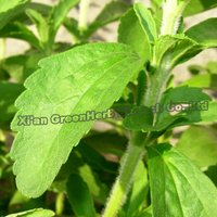 Natural Plant Extract Stevia Steviol Glycosides