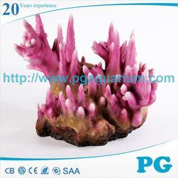 PG stylish natural corals